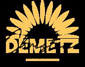 Logo Mentaltraining Demetz Tirol